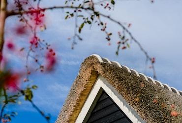 Detailfoto van de nok van een landhuis met rieten kap